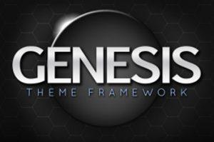 Genesis Framework Image